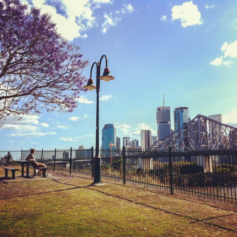 Widok Brisbane i opowieść most od Willson punktu obserwacyjnego obrazy royalty free