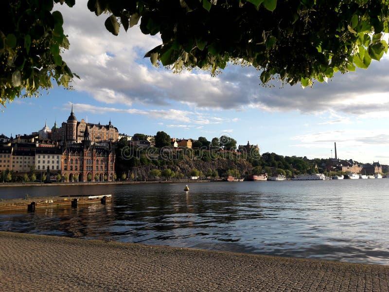 Widok budynek i rzeka, Stockhol, Sweeden, lato zielone drzewa obraz royalty free