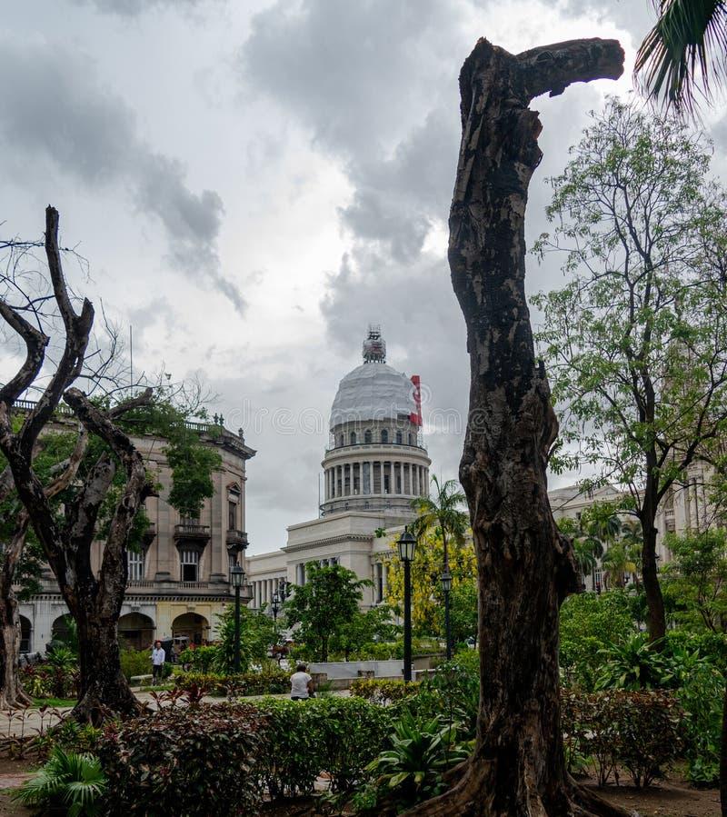 Widok capitol los angeles Hawański Kuba zdjęcie royalty free