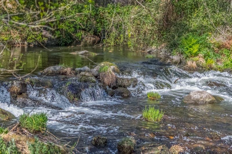 Widok DÃo rzeka z drzewami, skały, roślinność na bankach, odbicia w wodzie i jaskrawi kolory, zdjęcie stock