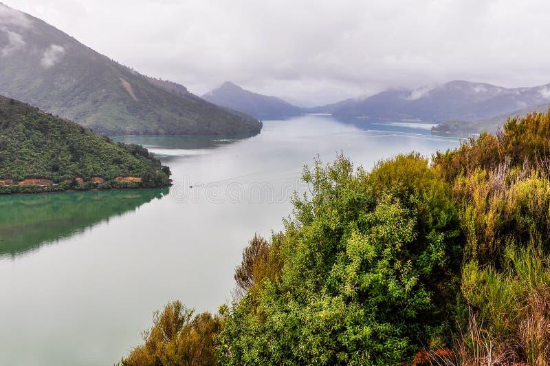 Widok dźwięki w królowej Charlotte drodze, Nowa Zelandia zdjęcia royalty free