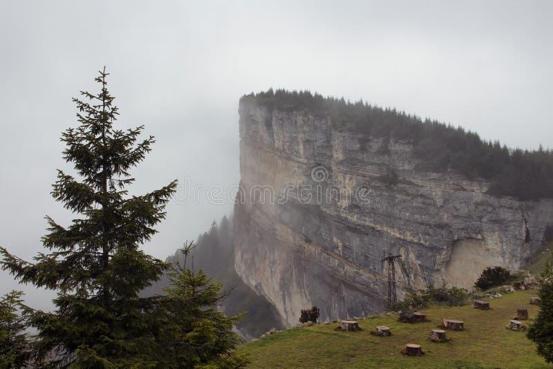 Widok duża skała na górze góry, drzew i pięknej natury w mgle, Wizerunek chwyta w Trabzon, Rize terenie czerń/ zdjęcia stock