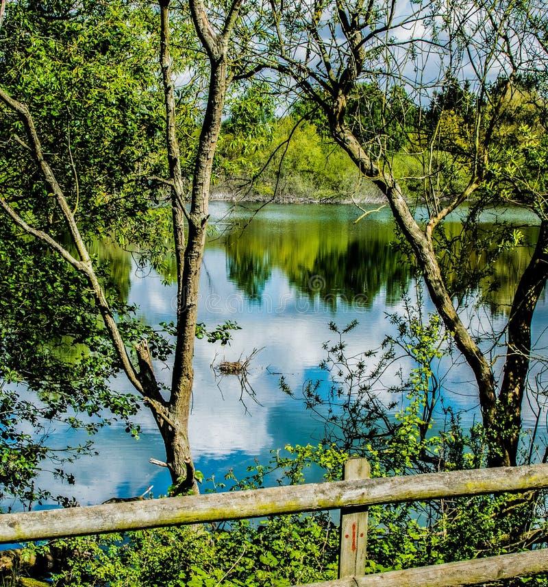 Widok forma ogrodzenie przy jeziorem obraz stock