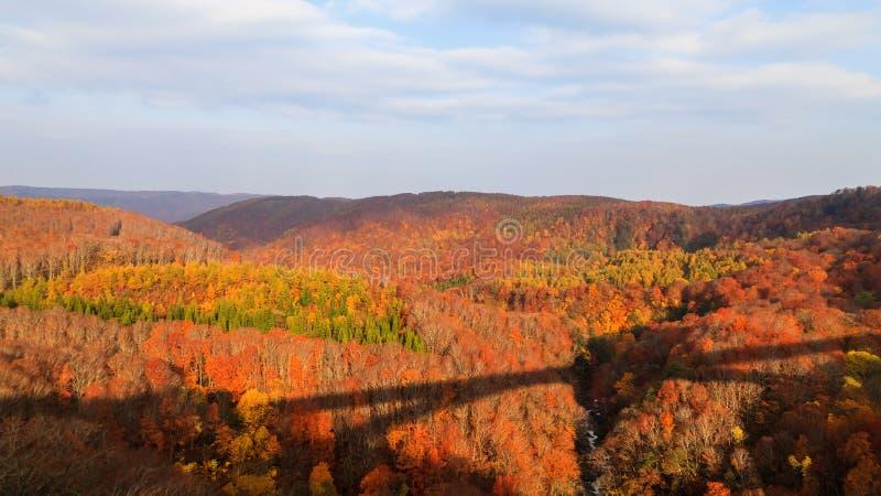 Widok góra Jogakura wąwóz w jesień sezonie, Aomori, Japonia obrazy royalty free