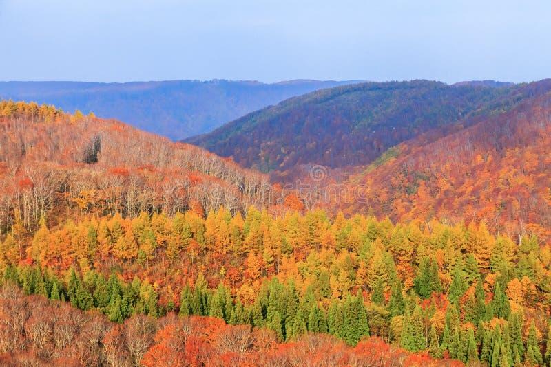 Widok góra Jogakura wąwóz w jesień sezonie, Aomori, Japonia fotografia stock