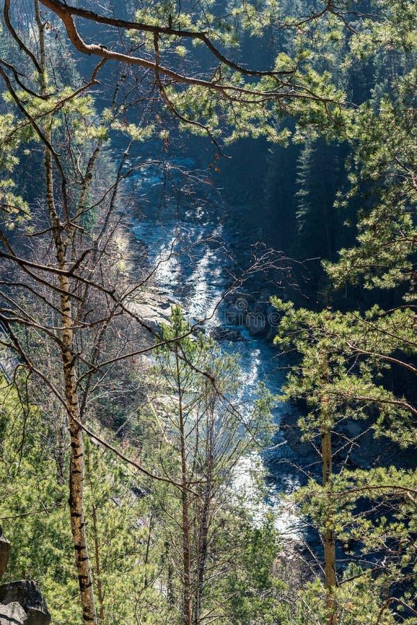 Widok górski przez drzewo ramy na ogół zdjęcia stock