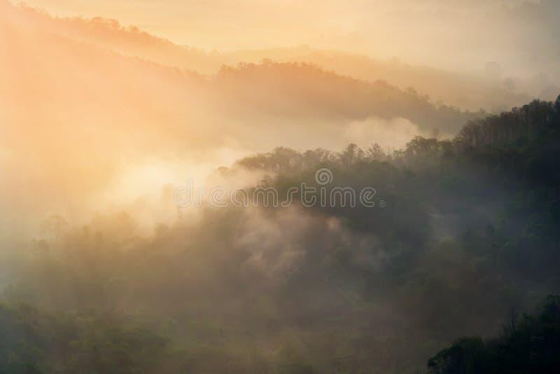 Widok górski przy rankiem z mgłą fotografia royalty free