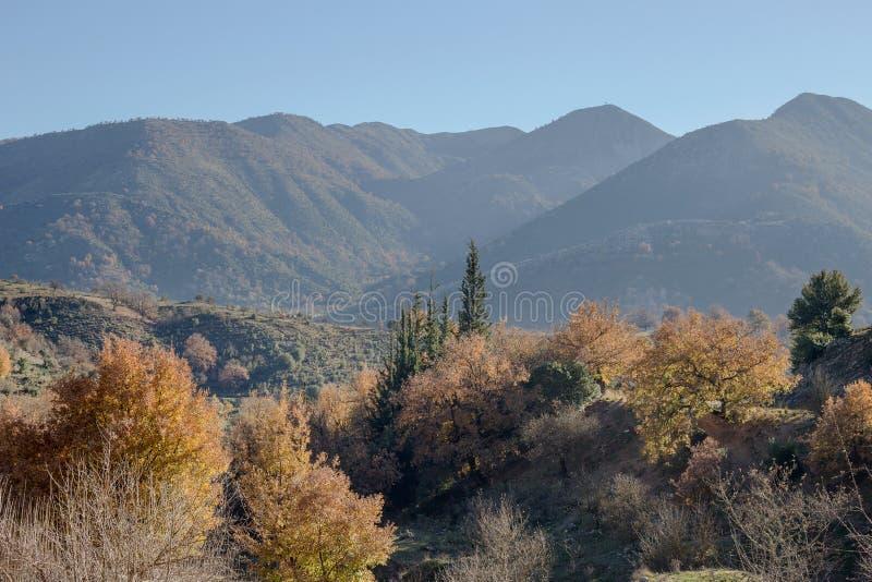 Widok górski w ranku zdjęcie stock