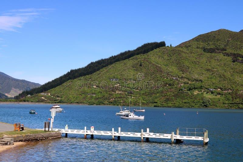 Widok gaj ręki Jetty królowej Charlotte trasy Prowadnikową sceniczną turystyczną drogą przy Okiwa zatoką, królowej Charlotte dźwi zdjęcie stock