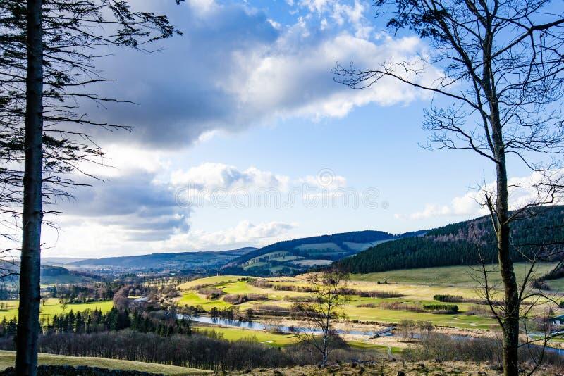 Widok gazony, lasy i wzgórza Cardrona teren Sc wiosny, obrazy stock