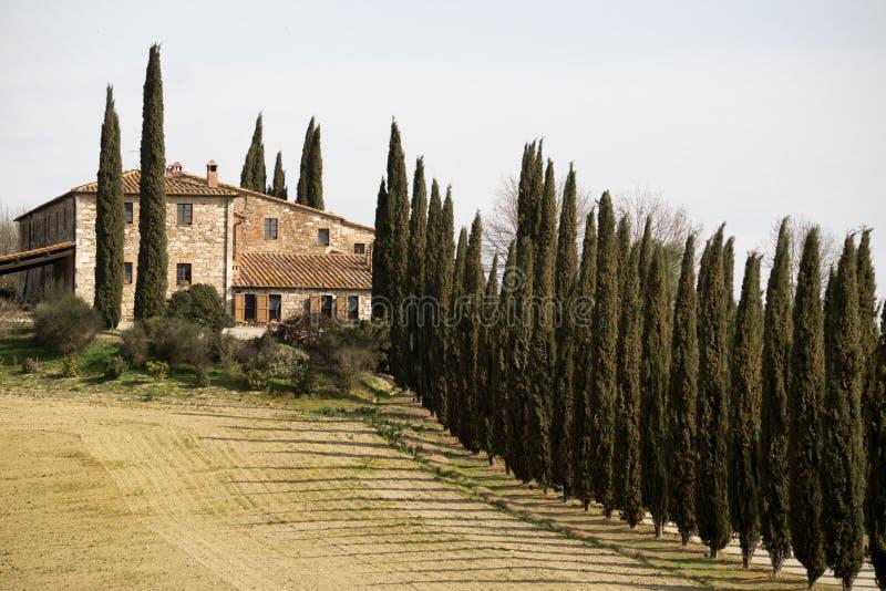 Widok gospodarstwo rolne w środkowym Tuscany obrazy royalty free