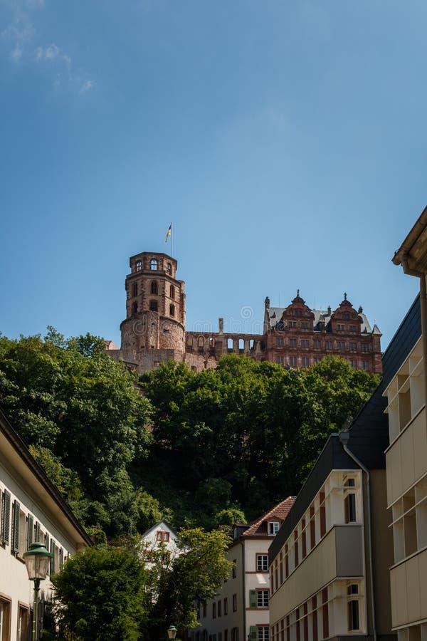 Widok grodowa grodowa ruina w Heidelberg od starego miasteczka, Baden Wuerttemberg, Niemcy obraz royalty free