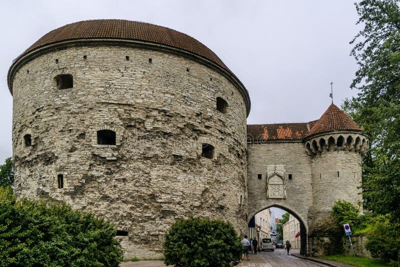 Widok Gruby Margaret wierza i Wielka Nabrzeżna brama w historycznym centrum Tallinn, Estonia zdjęcia royalty free