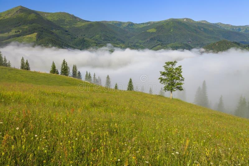 Widok halny krajobraz z mgłą zdjęcia stock