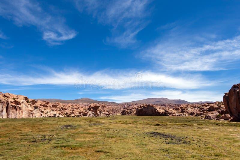 Widok jar Laguna Negr i skalisty Boliwijski plateau krajobraz, Boliwia, Ameryka Południowa zdjęcia stock