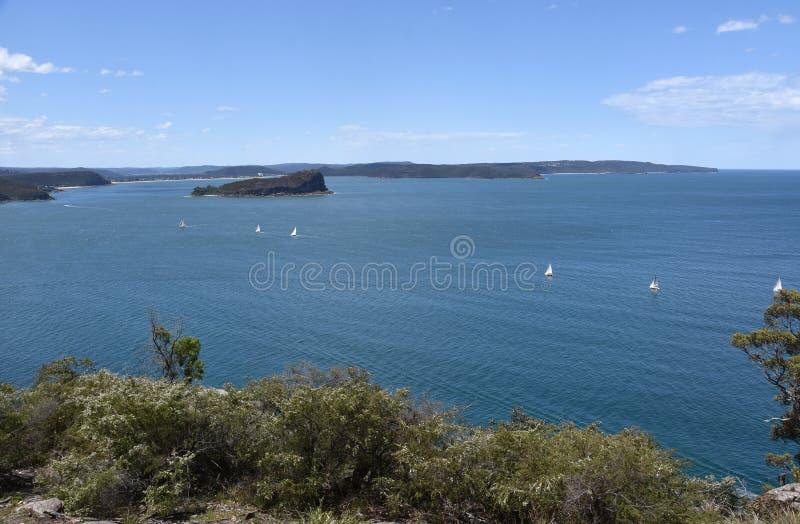 Widok lew wyspa, Łamająca zatoka i centrali wybrzeże, zdjęcia stock