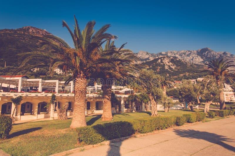 Widok luksusowy kurort Sveti Stefan wyspa Sceniczna aleja z drzewkami palmowymi zbliża morze śródziemnomorskie Milocer park Budva obraz stock