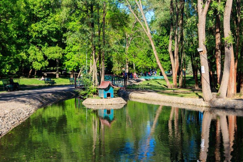 Widok mała rzeka w Sarzhin Yar parku, Kharkov zdjęcia royalty free