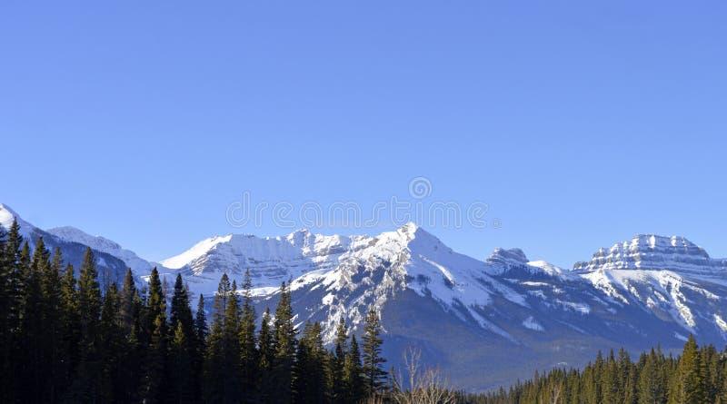 Widok majestatyczne Skaliste góry w Zachodnim Kanada obrazy stock
