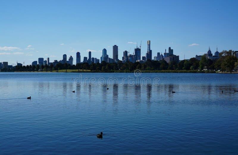 Widok Melbourne linia horyzontu od Albert Park jeziora zdjęcia royalty free
