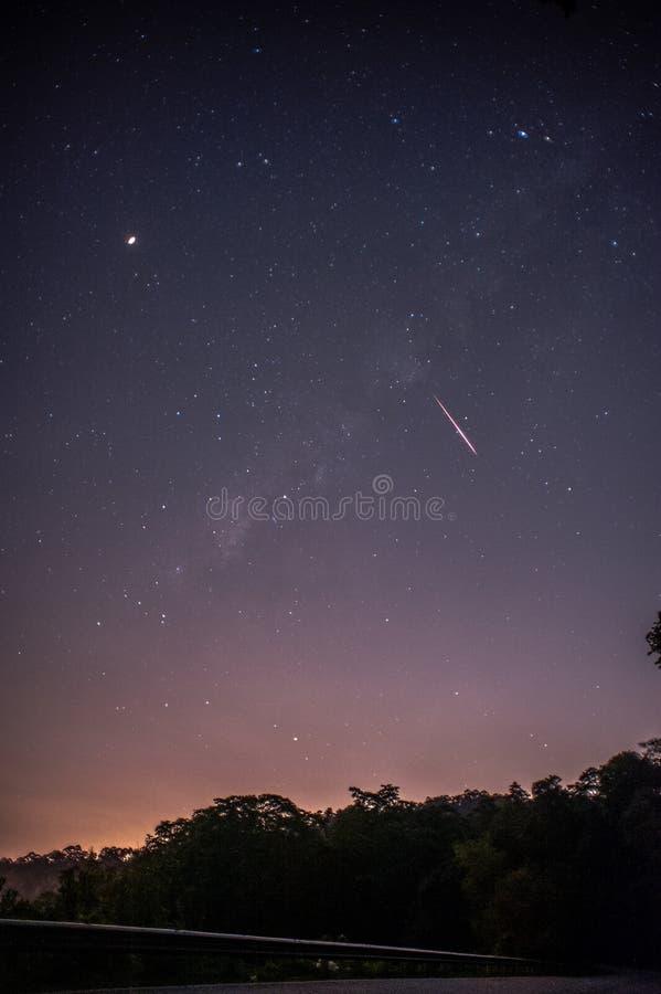 Widok meteorowa prysznic i droga mleczna z drzewną lasową sylwetką w tle Nocy Perseid meteorowej prysznic obserwacja obraz stock
