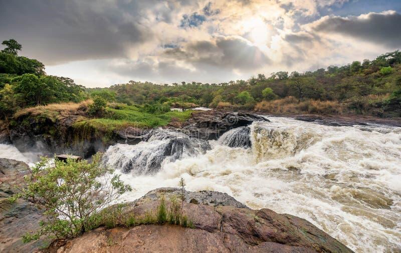 Widok Murchison Spada na Wiktoria Nil rzeki parku narodowym zdjęcia stock