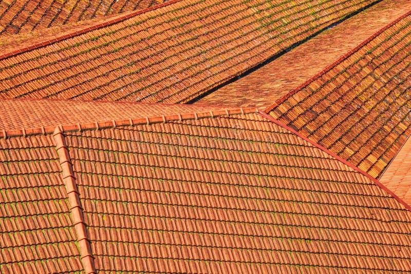 Widok na czerwoni kafelkowi dachy Porto fotografia stock