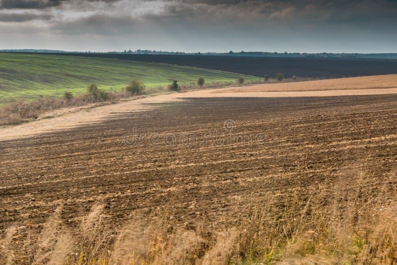 Widok na jesieni polu zdjęcia royalty free