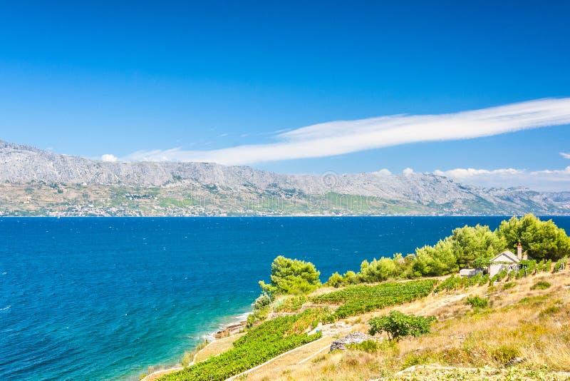 Widok na krajobrazie z wiejską siedzibą na Brac wyspie obraz stock