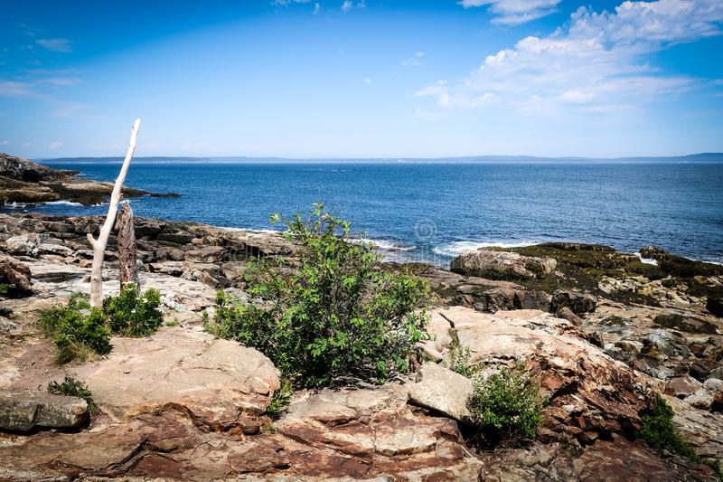Widok Na Ocean od falezy w Acadia parku narodowym fotografia stock