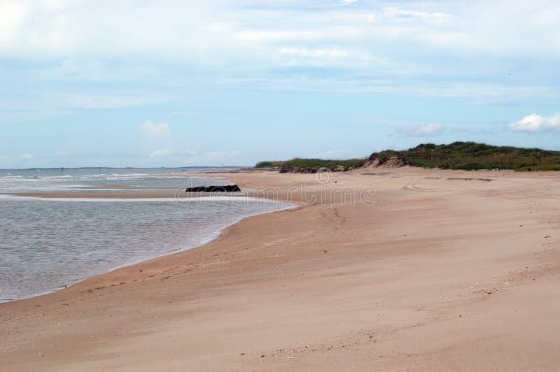 Widok na plaży