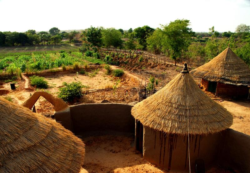 Widok na polach na organicznie gospodarstwie rolnym w suchej północy Ghana obraz stock