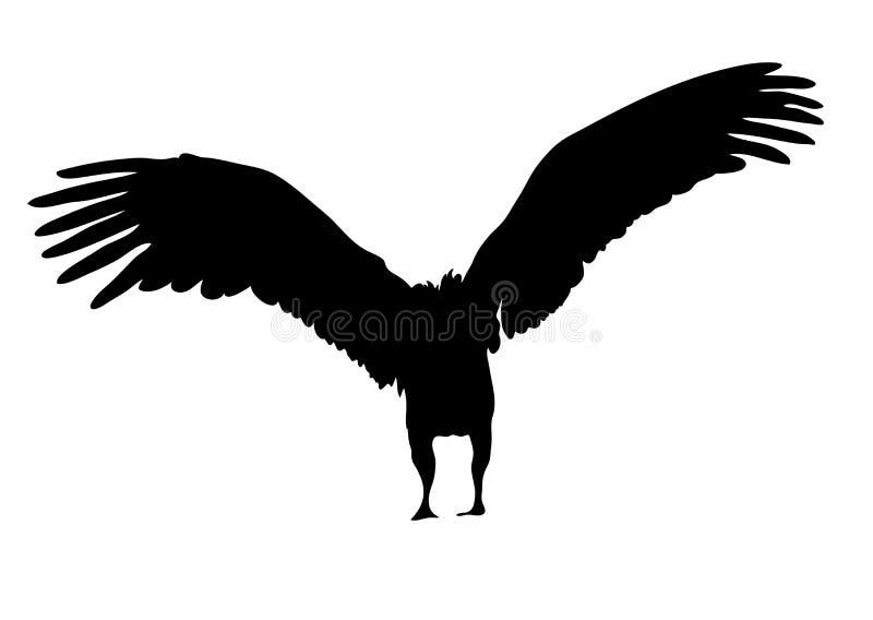 Widok na sylwetce afrykański sęp ilustracja wektor