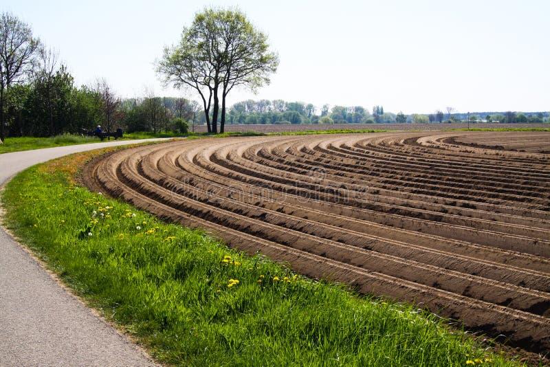 Widok na uprawiającym zaoranym cropland z symetrycznymi wyginać się bruzdami wzdłuż kolarstwo śladu w holandiach blisko Roermond zdjęcie stock