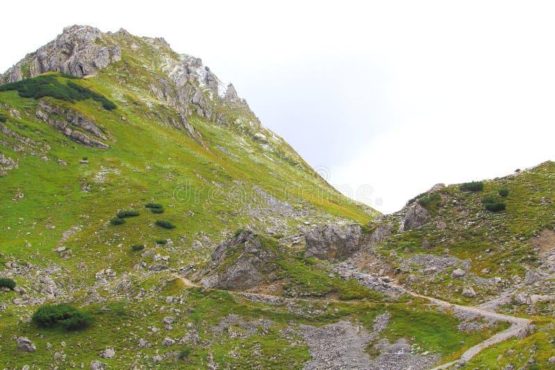 Widok na wycieczkować ślad w karwendel górach europejscy alps fotografia stock