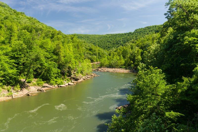 Widok nabranie rzeka od Jenkinsburg mosta fotografia royalty free