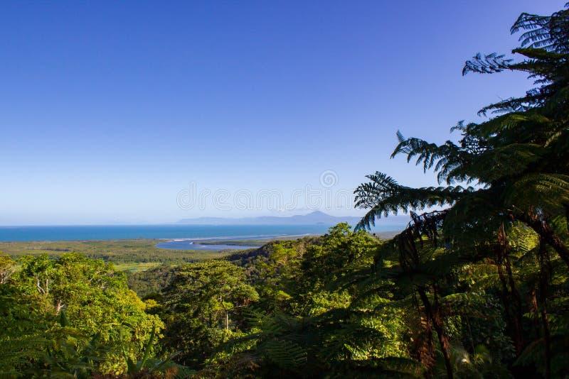 widok nad Daintree parkiem narodowym podczas zmierzchu, przylądek udręka, Australia fotografia royalty free