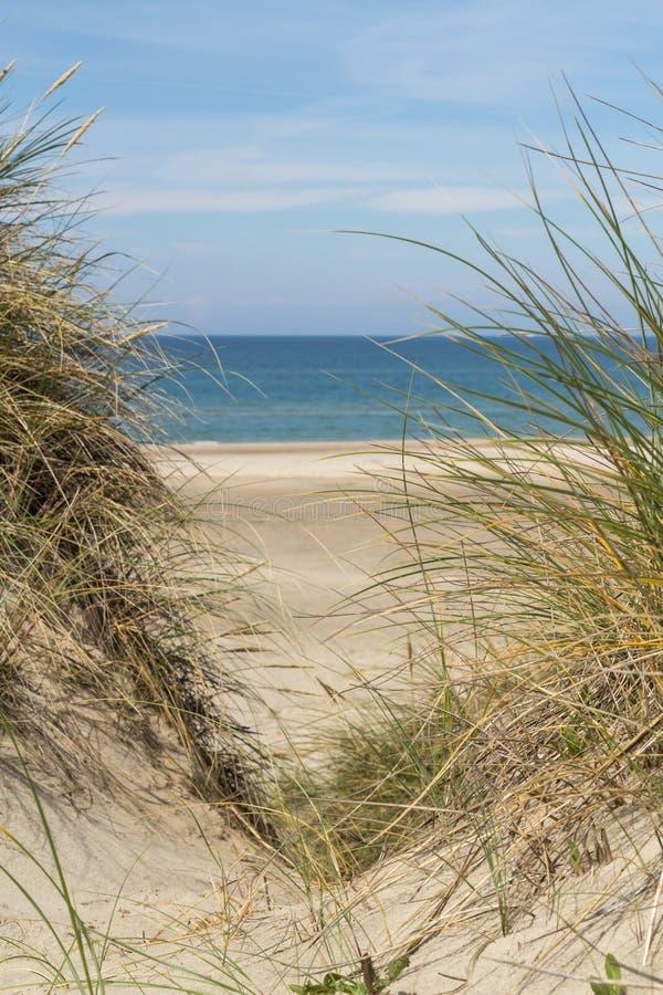 Widok nad morzem od diun zakrywać w lyme trawie obraz stock