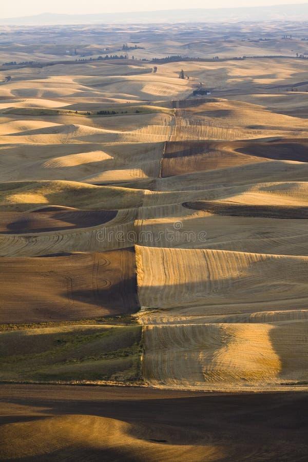 Widok nad patchworkiem gospodarstwa rolne w jesieni, Palouse dolina, wschodnia zdjęcie stock