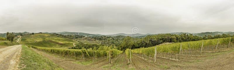 Widok nad wzgórzami z winnicami w pięknym Tuscany w Włochy fotografia royalty free