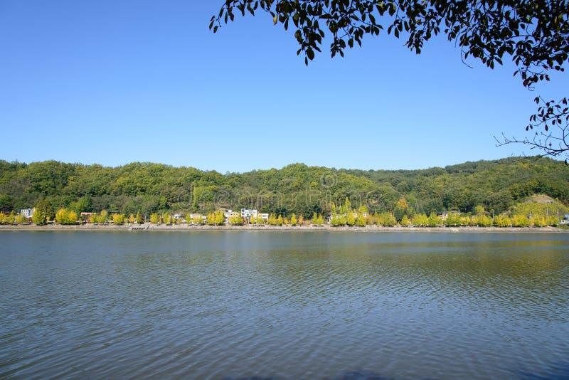 Widok Nakdong rzeka w Andong mieście obrazy royalty free