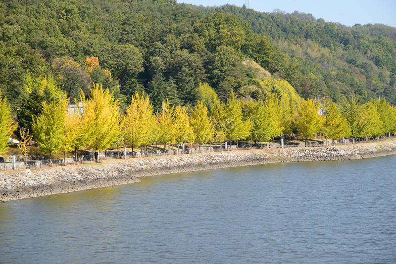 Widok Nakdong rzeka w Andong mieście obraz stock