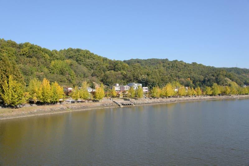 Widok Nakdong rzeka w Andong mieście obraz royalty free
