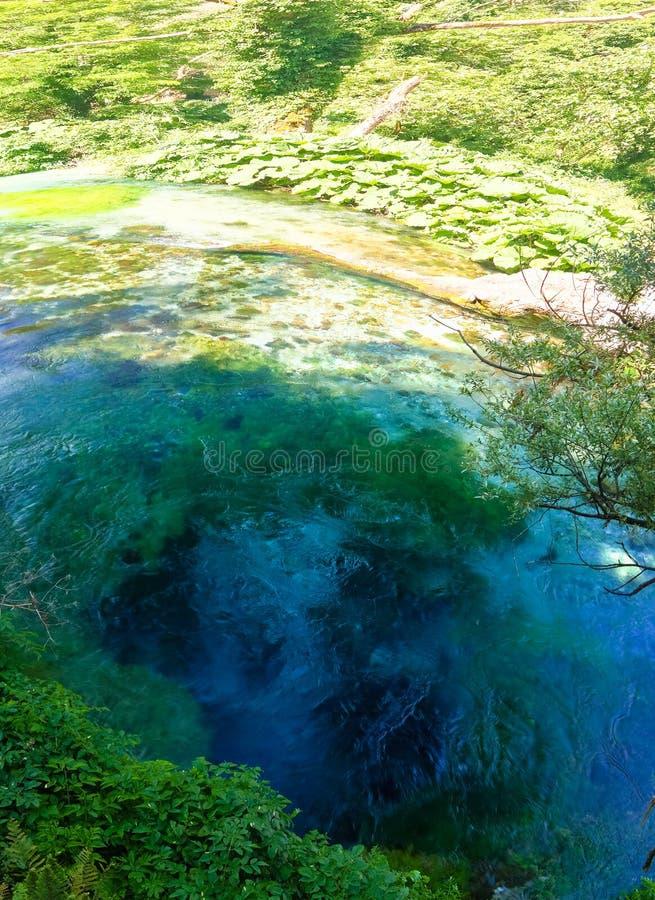 Widok niebieskie oko wiosna, początkowy źródło wody Bistrice rzeka blisko Muzine w Vlore okręgu administracyjnym, południowy Alba fotografia royalty free