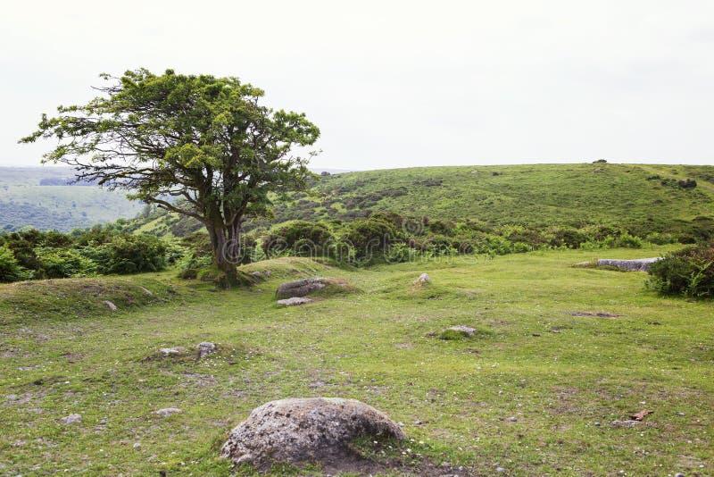 Widok niewygładzony krajobraz Dartmoor, UK obrazy royalty free