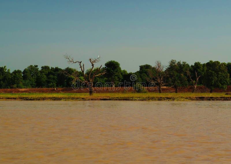 Widok Niger rzeka blisko Niamey, Niger obrazy stock