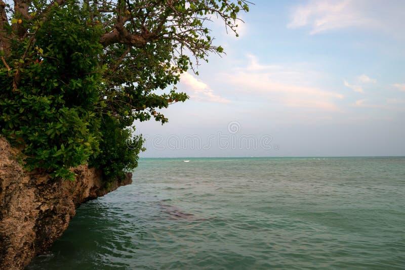 Widok ocean od Rockowej restauraci w Zanzibar zdjęcie stock