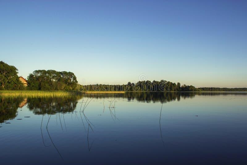 Widok od brzeg jezioro w lecie fotografia stock