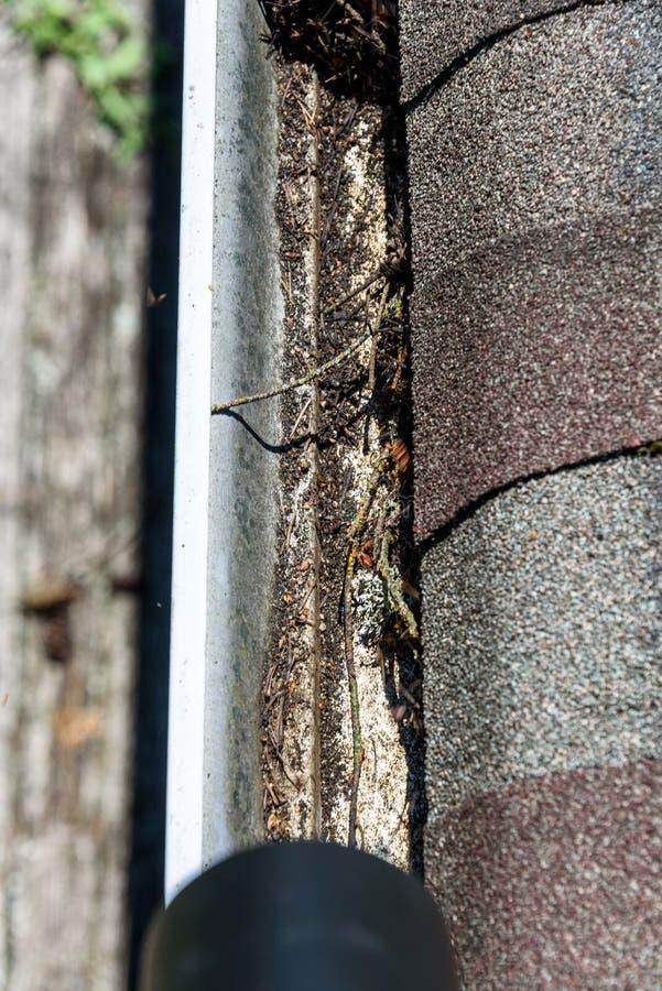 Widok od dachu liść dmuchawy tubka, asfaltów dachowi gonty i rynna, wypełniał z drzewnymi gruzami, podmuchowi gruzy z rynny obrazy stock