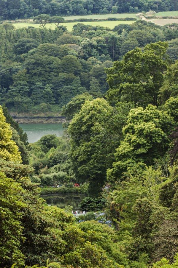 Widok od dom ziemi przy Trebah ogródami, Cornwall obrazy royalty free